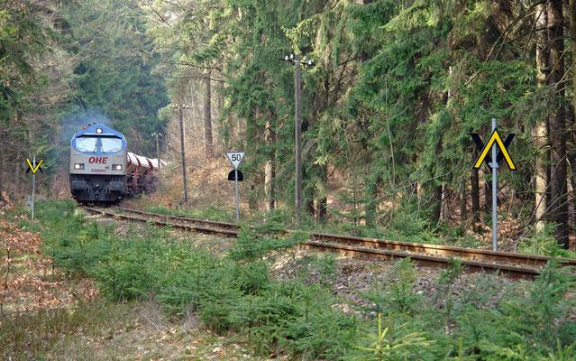 Der OHE-Tiger 330091 am Kilometer 26,4 der Strecke Neustadt/Sa.- Neukirch(Lausitz) West.  Foto: Thomas Lange, 30.03.2011