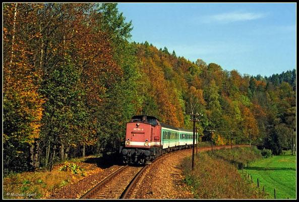 202 791 rollt am 21. Oktober 2000 durch das herbstliche Sebnitztal oberhalb Goßdorf talwärts. Foto: Archiv Michael Sperl