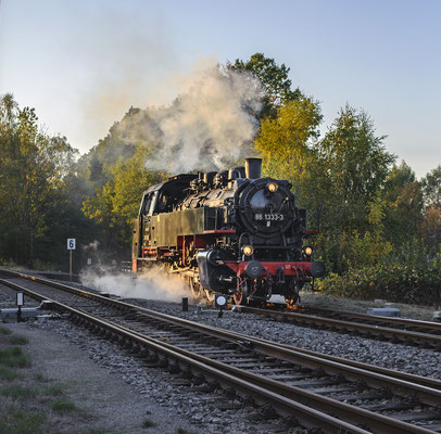 86 1333 in Neustadt, 13.10.18