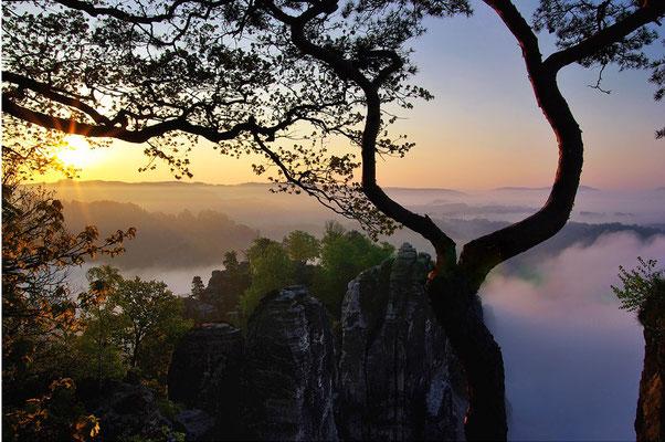 Sonnenaufgang an der Bastei. ISO 100, 35mm, f/7.1, 1/100sek.