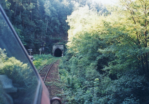 Mitfahrt auf einer BR 202 ( ex DR V 100 ), Lokführerperspektive im Sebnitztal, 1995