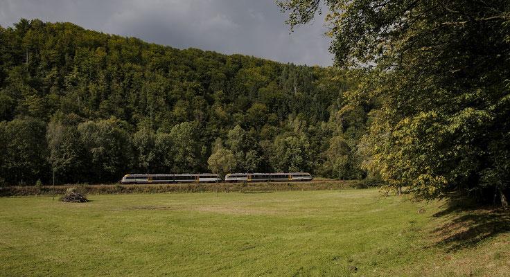 Ein Desiro-Doppelgespann im Sebnitztal nahe Goßdorf-Kohlmühle auf seinem Weg nach Bad Schandau. 22.09.2012.