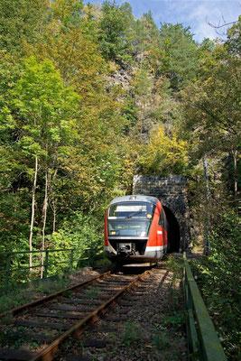 Zwischen Ulbersdorf & Mittelndorf kommt die Regionalbahn Neustadt-Bad Schandau hier aus dem Tunnel 2 ( bzw. Tunnel 6 von Sebnitz gezählt ), 27.09.09