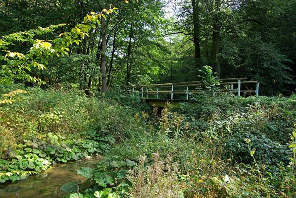 Es geht über die erste Stahlträgerbrücke, die momentan noch als Wanderbrücke dient, 26.09.09