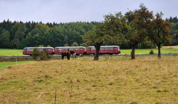 Auch diese Aufnahme zeigt den Zug erneut bei Krumhermsdorf. 15.09.12