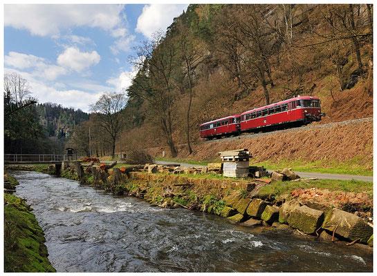 Mitte April war der Uerdinger Schienenbus des DDM aus Neuenmarkt-Wirsberg zu Gast auf dem Sächsische Schweiz Ring. Hier kommt der Zug die Steigung hinauf zwischen Porschdorf und Goßdorf-Kohlmühle. 17.04.12