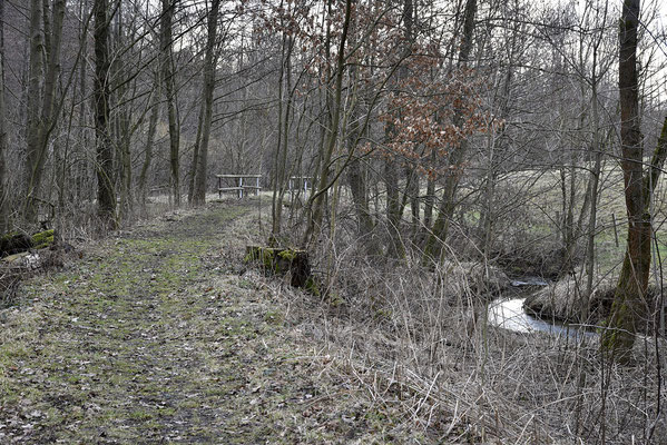 Danach folgt dieser Bogen. Blickrichtung Lohsdorf, 04.03.19