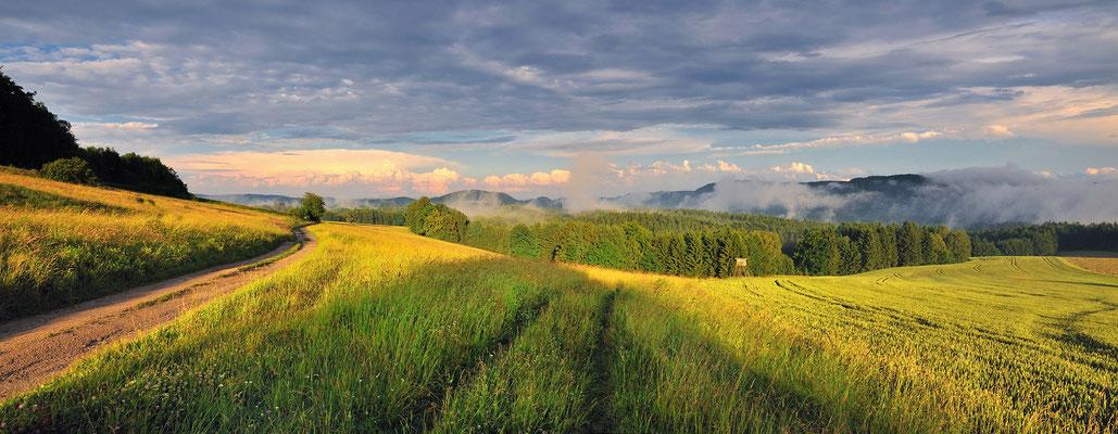 Nach einem Sommergewitter. Blick vom Schaarwändeweg in die hintere Sächsische Schweiz. Geht man diesen Weg weiter gelangt man zum Beuthenfall im Kirnitzschtal. Panorama aus 4 Aufnahmen bei 16mm, ISO 200, f/7.1