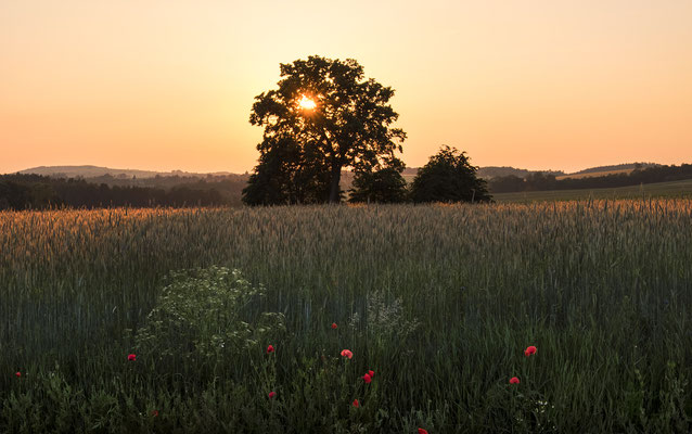 Sonnenuntergang zwischen Goßdorf und Waitzdorf. ISO 500, 43mm, f/11.0, 1/150sek.