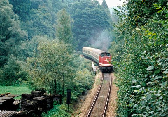Eine 202 kommt hier aus dem Tunnel 4 und wird in wenigen Augenblicken Ulbersdorf erreichen. Am Haken hat sie eine Garnitur wie sie in den 90érn oft gesehen werden konnte. August 1996, Fotoscan