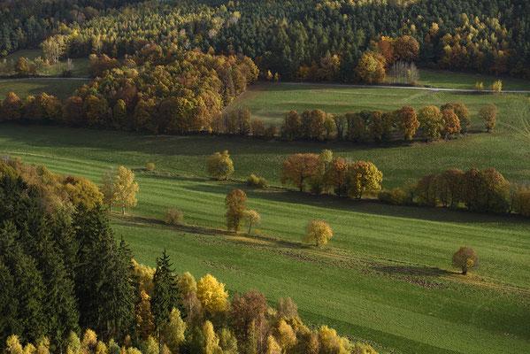 Herbstfarben unterhalb des Pfaffensteins. ISO 200, 58mm, f/6.3, 1/200sek.