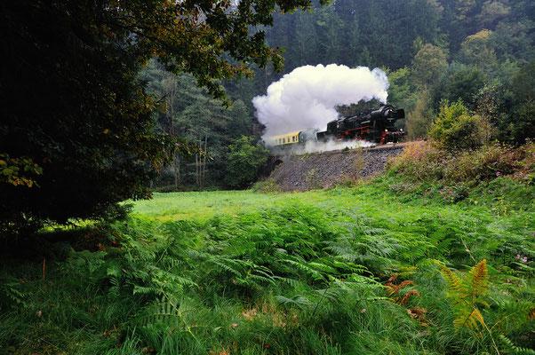 Anlässlich des Landeserntedankfestes in Sebnitz hatten die Ostsächsischen Eisenbahnfreunde Sonderfahrten auf der Sebnitztalbahn organisiert. Am 22.09.12 donnert 52 8080 auf dem Weg nach Sebnitz aus Tunnel 3 bei Ulbersdorf.