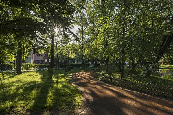 Frühlingsmorgen im Arthur-Richter-Park, Mai 2019