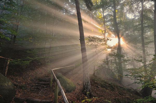 Eindrucksvoller Sonnenaufgang im Wald unterhalb des Liliensteins. ISO 100, 24mm, f/5.0, 1/50sek. (Polfilter).