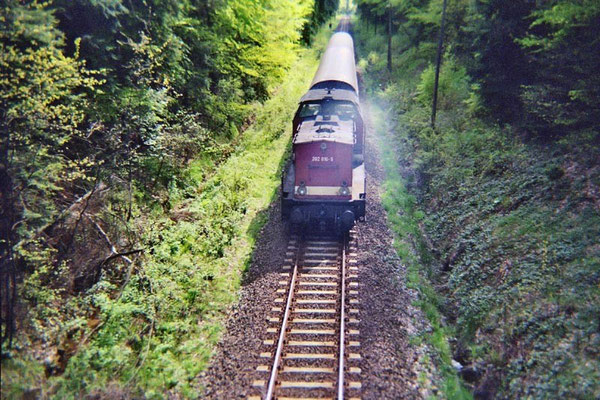 Regionalbahn Neustadt-Bautzen kurz vor Neukirch / Lausitz ( West ). 1999, Foto: Pierre Güttler