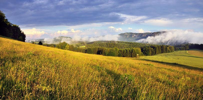 Nach einem Sommergewitter. Blick vom Schaarwändeweg in die hintere Sächsische Schweiz. Geht man diesen Weg weiter gelangt man zum Beuthenfall im Kirnitzschtal. Panorama aus 3x16mm, ISO 100, f/7.1