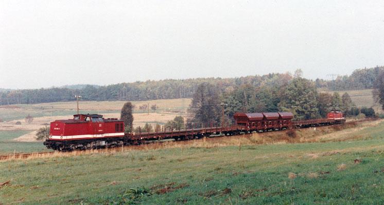 2x V100 mit 202 836 als Zuglok mit Güterzug von Neustadt Richtung Sebnitz.