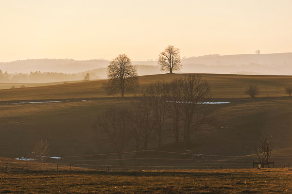 Blick in die Landschaft bei Ehrenberg, Februar 2019.