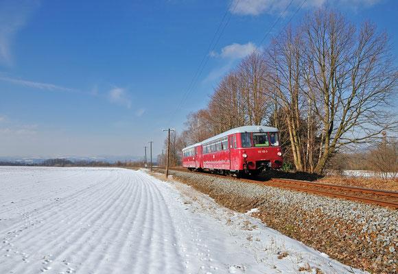 Sonderfahrt mit dem Ferkeltaxi auf dem Sächsische-Schweiz-Ring. Hier hat der Zug Pirna und das Elbtal hinter sich gelassen und knattert durch die Steigung bei Lohmen, noch stehen hier die Telegrafenmasten... 23.03.2013