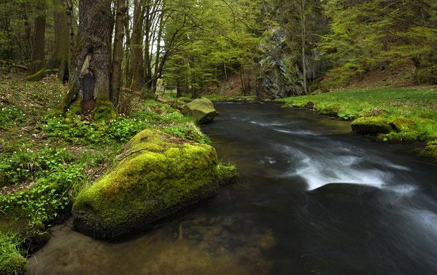 Frühling an der Polenz. ISO 50, 24mm, f/18.0, 1,6 Sekunden (Haida ND 64 Filter).
