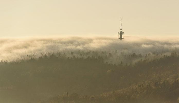 Goldener Oktober. Aussicht von der Götzinger Höhe hinüber zum Ungerturm mit einem Vogelschwarm, 19.10.2017