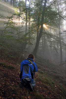 Sonnenaufgang in der Sächsischen Schweiz, Foto: Jürgen Vogel