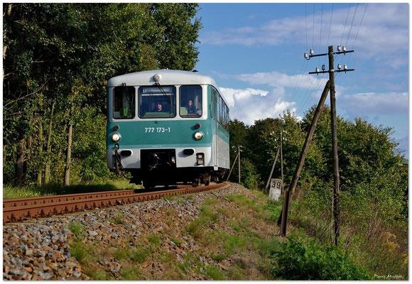 Nochmals in Lohmen, umrahmt von den letzten Überbleibseln der Telegrafenleitungen an dieser Strecke. 07.10.12. Text & Foto: Pierre Matthes