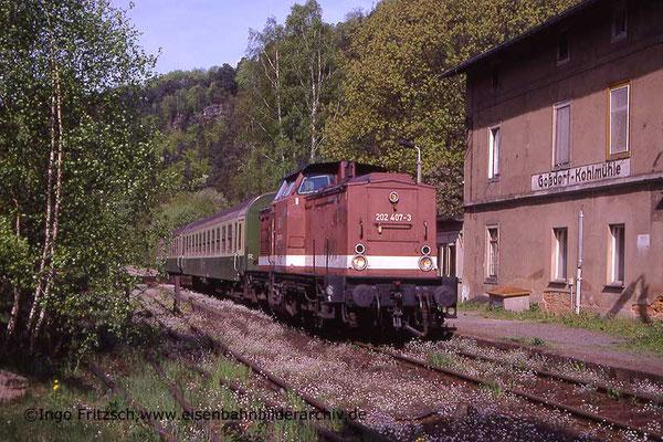 202 407 von Bad Schandau kommend auf dem Weg nach Neustadt / Bautzen. Hier am HP Goßdorf-Kohlmühle. 05.05.1999 Foto: Ingo Fritzsch