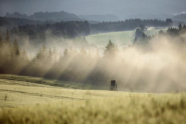 Morgenstimmung am Lichtenhainer Panoramaweg. ISO 50, 200mm, f/4.0, 1/800sek.