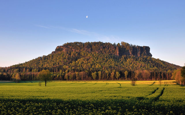 Sonnenaufgang, Rapsblüte und Mond am Lilienstein. ISO 100, 22mm, f/7.1, 1/80sek.