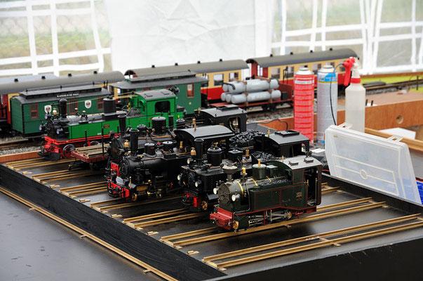 Verschiedene Dampflokmodelle der Saxonia Live Steamers. 27.08.2011