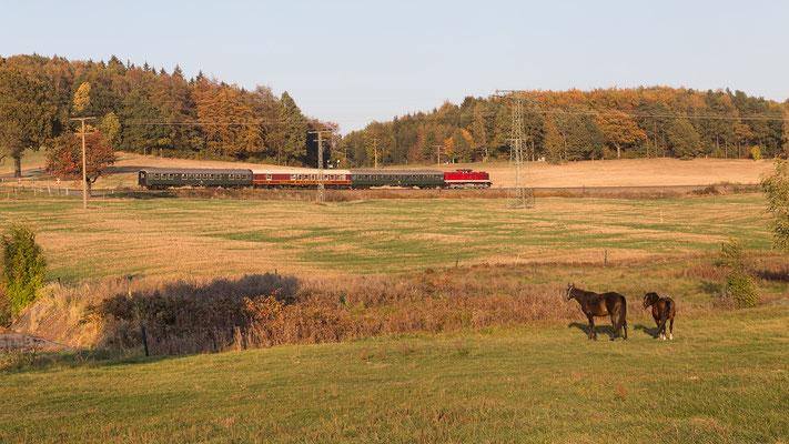 Im Goldenen Oktober-Abendlicht wurde der Zug erneut bei Krumhermsdorf abgelichtet. Foto: Jürgen Vogel, 13.10.18