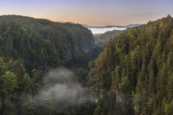 Herbstmorgen im Polenztal. ISO 200, 56mm, f/4.0, 1/6sek.