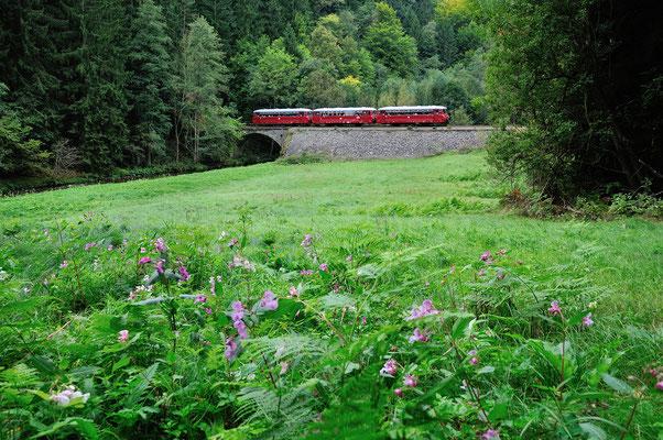 Am Nachmittag ging es dann weiter in Richtung Bad Schandau. Das letzte Bild zeigt den Zug im Sebnitztal bei Ulbersdorf. 15.09.12
