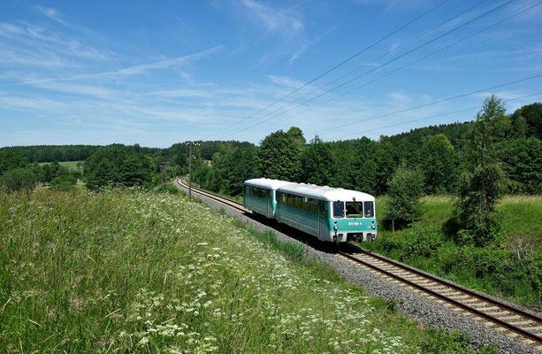 Sonderzug durch die Sächsische Schweiz der OSEF, hier kurz vor dem Haltepunkt Krumhermsdorf ( das letzte Foto eines Sonderzuges mit Telegrafenmasten an dieser Stelle ), 13.06.09