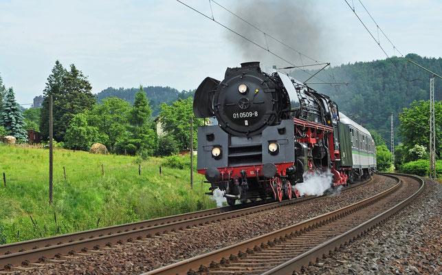 Kurz darauf folgte der 52 die 01 509 mit dem 18. Sächsisch-Böhmischen-Freundschaftszug von Leipzig nach Prag. Rathen, 12.06.10