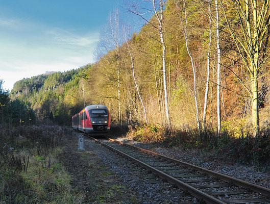 RB 17127 von Bad Schandau hat hier bei Kilometer 59,0 fast den Bahnhof Goßdorf-Kohlmühle erreicht. Die Sonne dringt nun nur noch selten ins romantische Sebnitztal vor... 14.11.10
