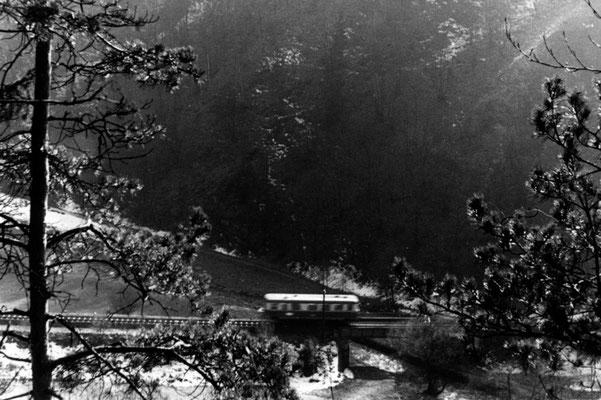 VT 135 von Kohlmühle kommend nach Ulbersdorf unterhalb des Schwarzberges, 1965. Foto: Archiv Axel Förster