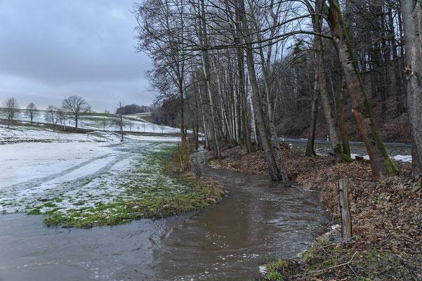 An dieser Stelle werden später auch Arbeiten zur Befestigung des Ufers nötig. Blickrichtung Ehrenberg. 11.02.19