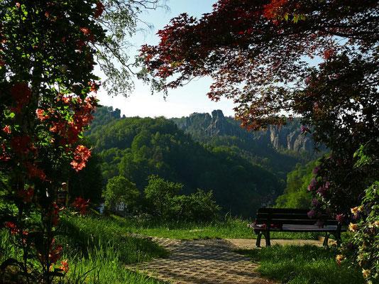 Im Rhododendronpark oberhalb von Rathen.