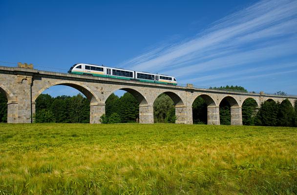 Trilex-Desiro der Vogtlandbahn von Dresden nach Zittau auf dem Putzkauer Viadukt, Juni 2015.