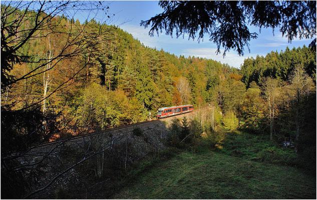 """Erstes Streckenfoto mit """"neuer"""" Nationalparkbahn. Ein Desiro befindet sich hier auf der Strecke Rumburk-Sebnitz-Bad Schandau-Decin, aufgenommen im Sebnitztal zwischen Ulbersdorf & Mittelndorf am 19.10.2014."""