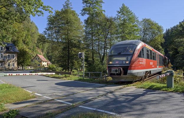 Desiro der Nationalparkbahn von Rumburk nach Decin, hier am BÜ in Goßdorf-Kohlmühle. 15.09.2016