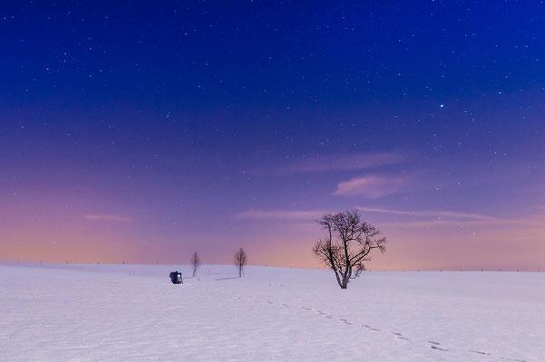 Polarnacht... Foto: Jürgen Vogel