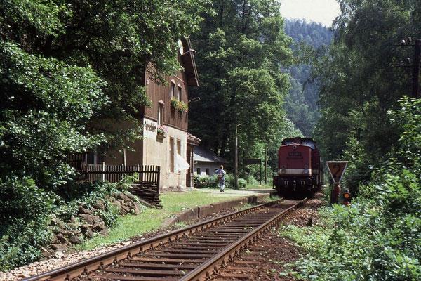 Damals Alltag im Sebnitztal: 112 498 mit P18873 bei der Einfahrt in den Haltepunkt Porschdorf, Foto: Andreas Matschke