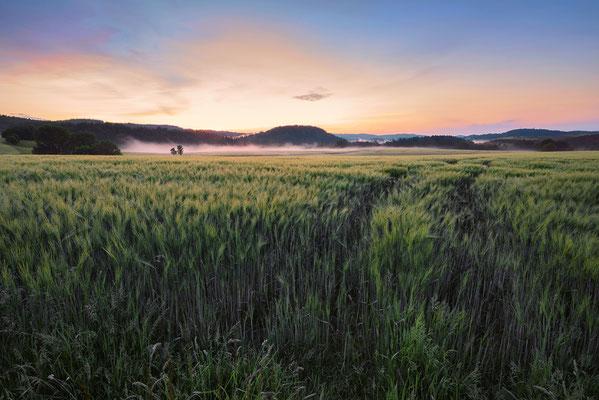 Morgenstimmung bei Lichtenhain. ISO 200, 17mm, f/16.0, 1 Sekunde (Haida Grauverlauf).