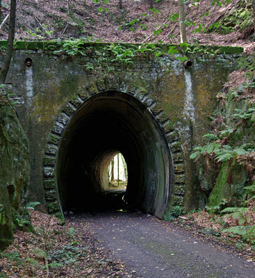 Danach trifft die Strecke wieder auf den derzeitigen Wanderweg, an Tunnel 1 gibt es auch viel Arbeit ... 26.09.09