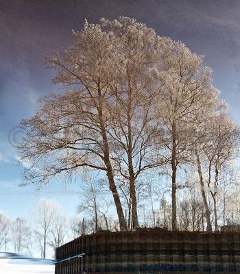 Am Hammehafen #3 bei Worpswede, im Winter 2016