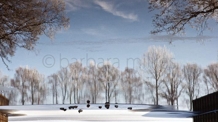 Am Hammehafen #2 bei Worpswede, im Winter 2016