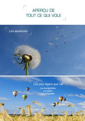 exemples de page du livre rêve d'icare